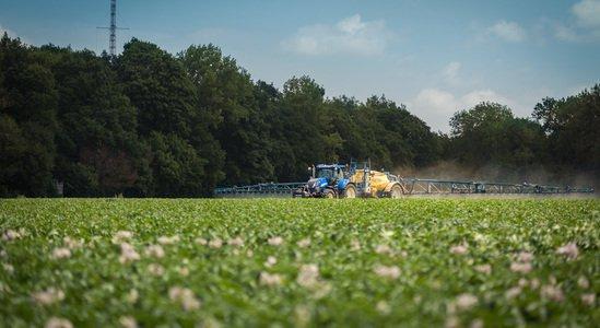 VRS PRODUCT – SABBE & CIE - Fournisseur de pommes de terre et de produits surgelés.